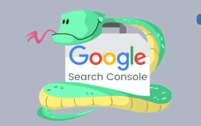 How to connect to Google Search Console API with Python
